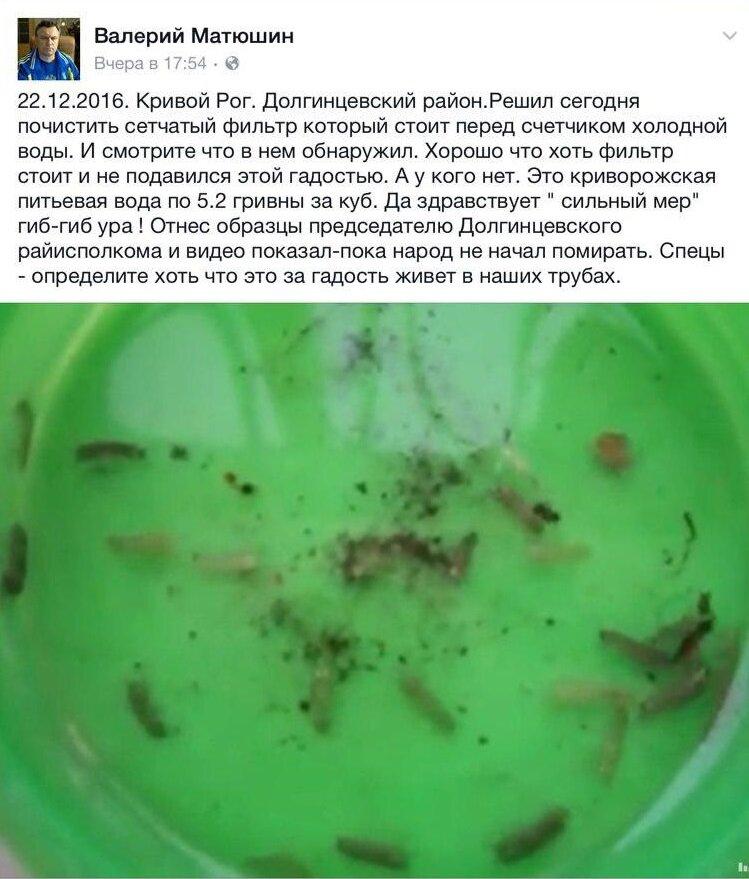 http://o.kr.ua/assets/images/2016/obschestvo/12_2016/photo_2016-12-23_15-08-20.jpg